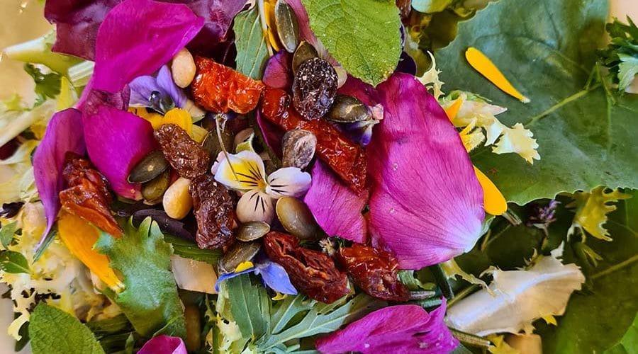Soirées de la création – Les fleurs et herbes comestibles